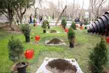طرح کاشت 10 هزاراصله درخت در دانشگاه گیلان با حضور وزیر علوم