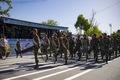 رژه نیروهای مسلح مستقر در فارس برگزار شد