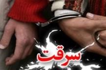 اعضای یک باند سرقت خانوادگی در استان گلستان دستگیر شدند