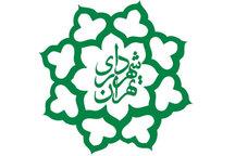 نایب رئیس شورا: گزینههای قبل از نجفی هم مدنظر شورا هستند