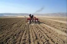 326 تن بذر اصلاح شده غلات در خمین توزیع شد
