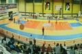 تیم نبوغ سرمایش اراک بر هیات بسکتبال کردستان غلبه کرد