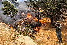 آتش سوزی جنگل ها و مراتع کشور 37 درصد کاهش یافت