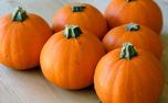 در فصل پاییز از مصرف این خوردنی شگفت انگیز غافل نشوید