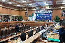 رئیس هیات تکواندو اصفهان انتخاب شد