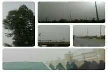 وزش باد شدید و پدیده گرد و غبار شهرستان خاش را فرا گرفت