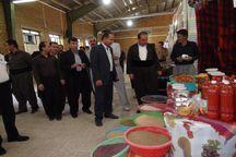 نمایشگاه توانمندیهای روستایی شهرستان روانسر گشایش یافت
