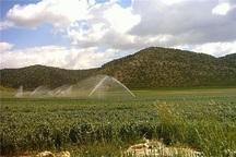 اجرای طرح آبیاری نوین در 12 هزار هکتار از اراضی مهاباد