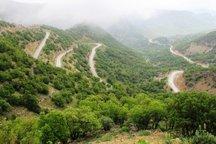 احیای 2200هکتار جنگل و مرتع در کهگیلویه و بویراحمد آغاز شد