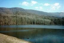 مرگ طبیعی برای دریاچه 'الندان 'در مازندران