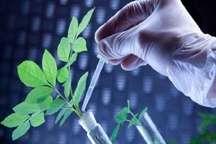 خلاء های تحقیقات کشاورزی با تدوین نظام نوین ترویج شناسایی شد