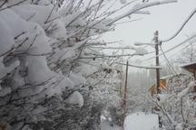 بارش برف بهاری راه 10 روستای طالقان را مسدود کرد