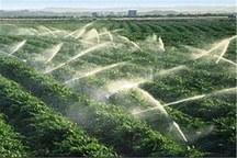بهره برداری از آب و خاک به تعاونی های خوزستان واگذار می شود