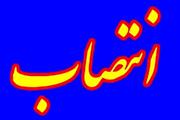 انتصاب رئیس هیات ورزش های رزمی گیلان بعنوان رئیس کمیته امور استان های فدراسیون ورزش رزمی ایران