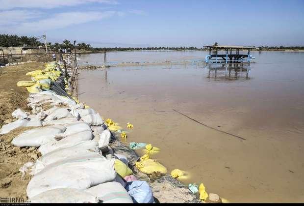سیلاب به آبزی پروران خوزستان و لرستان خسارات سنگینی وارد کرد