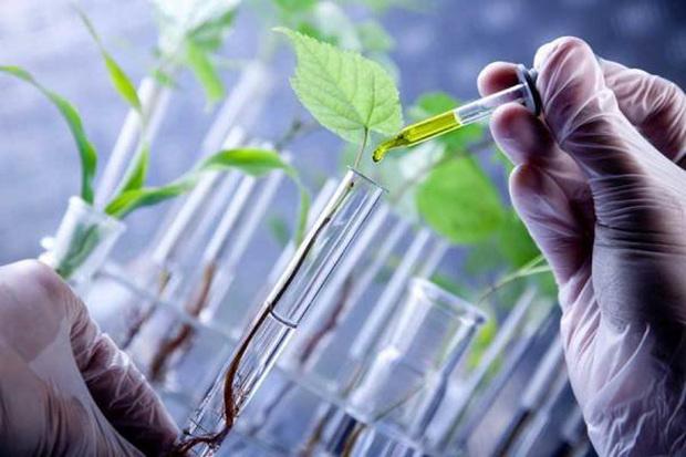 همایش زیست فناوری پیشرفت و سلامت انسان در قزوین آغاز شد