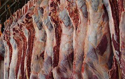 10هزار تن گوشت قرمز به سایر استانها حمل شد