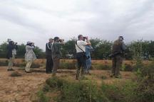 پرندهنگرهای سوئدی به پارک ملی کرخه سفر کردند