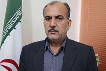 تلاش جدی برای حضور تکوندوکاران بوشهر درلیگ های کشور