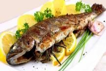 سرانه مصرف ماهی در خراسان شمالی پایین است