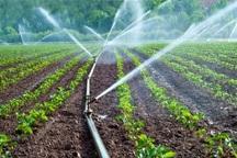 کمک های فنی و اعتباری آبیاری نوین 30 درصد افزایش می یابد