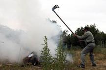 روش علمی حلقه گم شده مهار آتش سوزی جنگل ها
