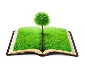 تلاش دانشگاه فردوسی برای ارایه الگویی در حفاظت محیط زیست