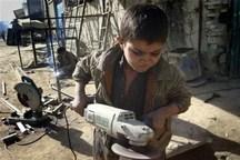 53 درصد کودکان کار ایلام فصلی هستند