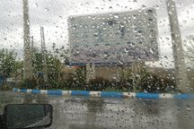 آب گرفتگی شدید میدان آزادی+ ویدیو
