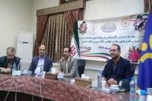 ایرنا رسانه برتر پوشش اخبار سالگرد انقلاب اسلامی در یزد شد