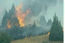 آتش جنگل های راز وجرگلان خراسان شمالی فرا گرفت  مسئولان درخواست کمک کردند