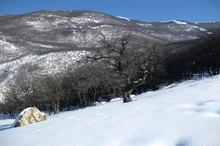 برف پاییزی ارتفاعات مرزی ایران و ترکمنستان را سپیدپوش کرد