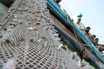 افزون بر 8 هزار تن انواع ماهی از چابهار صادر شد