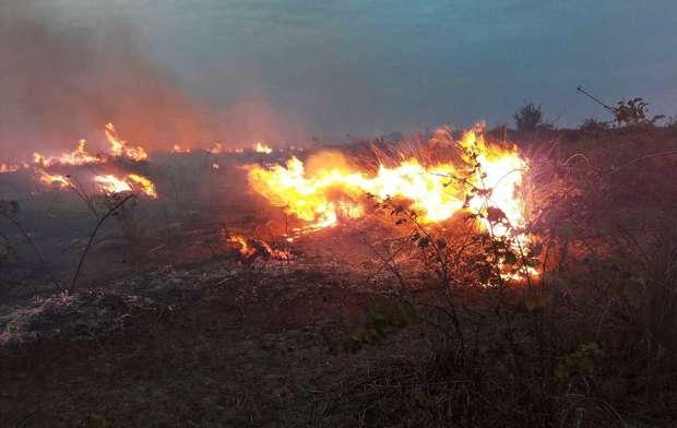 بارندگی رگباری آتش سوزی میانکاله را کاملا خاموش کرد