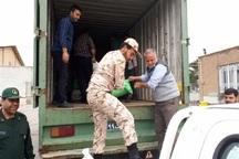 جهادگران شهرستان البرز عازم لرستان شدند