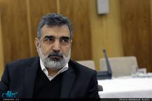 ایران فعلا از غنیسازی ۴.۵ درصد عبور نمیکند/ کشور نیازی به غنیسازی در سطح 20 درصد ندارد
