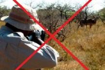 مجوز شکار در خراسان رضوی صادر نمی شود