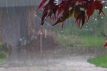 بارش های بهاری در چهارمحال و بختیاری ادامه می یابد