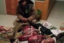 شکارچی متخلف به پرداخت جزای نقدی و حبس تعزیری محکوم شد