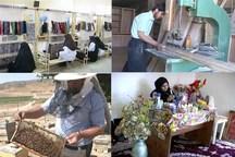 335 اشتغال روستایی کردستان در انتظار در یافت تسهیلات یارانه ای