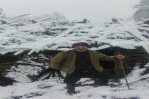 بارش اولین برف پاییزی در املش و بروز مشکلات