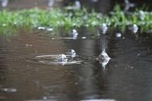 78 میلی متر باران در دهدشت بارید