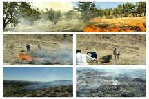آتش سوزی جنگل های راز وجرگلان خراسان شمالی مهار شد