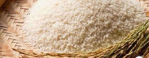 قیمت برنج در بازار افزایش یافت