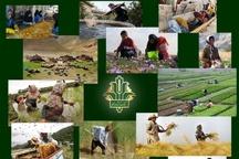 انعقاد قرارداد 960 میلیارد ریال تسهیلات اشتغال روستایی و عشایری