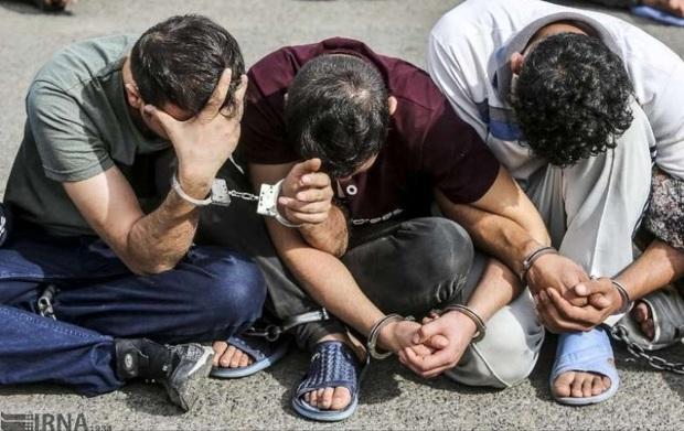 سارقان حرفه ای در فارس دستگیر شدند