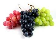مصرف توت و انگور و تاثیر آن بر تقویت سلامت ریه ها
