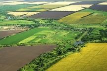 600 هکتار مزرعه در خراسان رضوی یکپارچه سازی شد