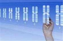 6500 قزوینی خدمات مشاوره و غربالگری ژنتیک دریافت می کنند