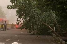 شهر قزوین برای بحران های فصلی باید آماده باشد
